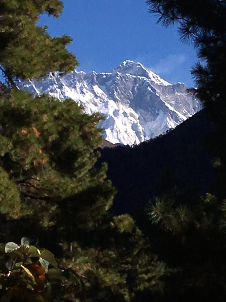 First view of Everest through the trees!